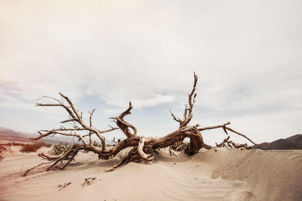 stilpirat-usa-california-death-valley-10