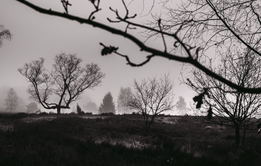 samsung-stilpirat-014