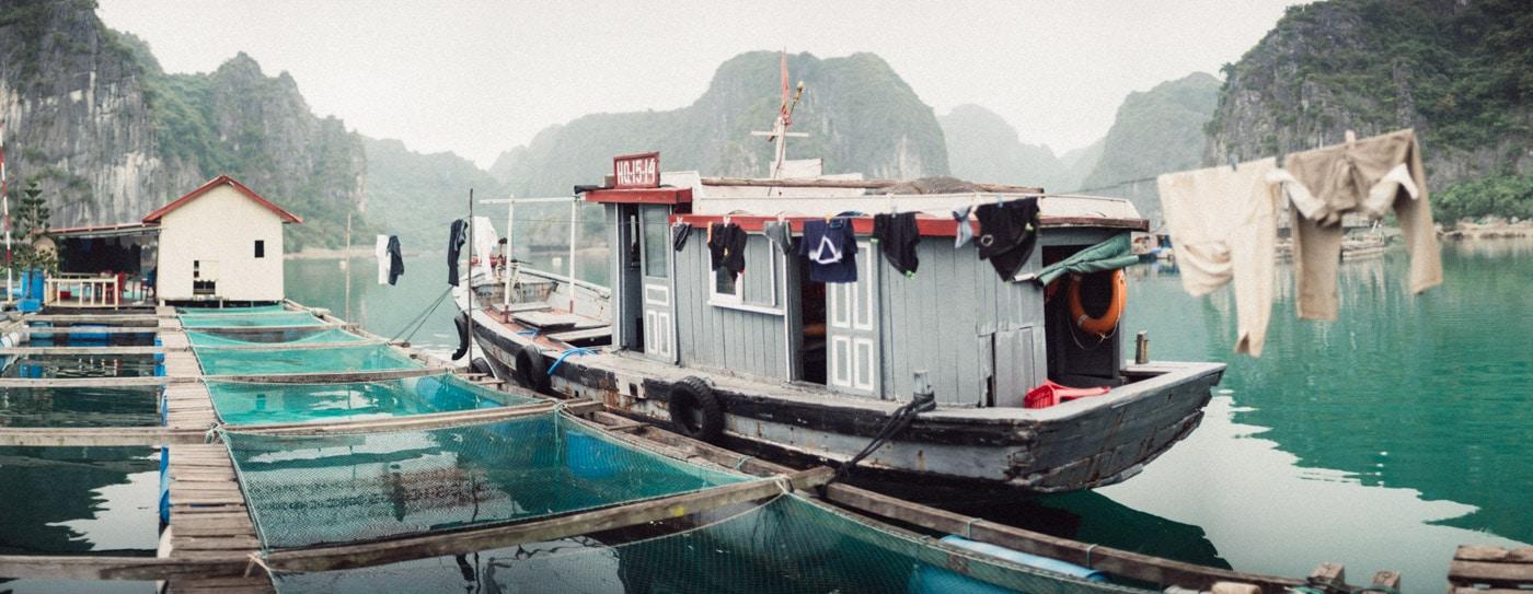 stilpirat_in_Vietnam_widelux-1-20