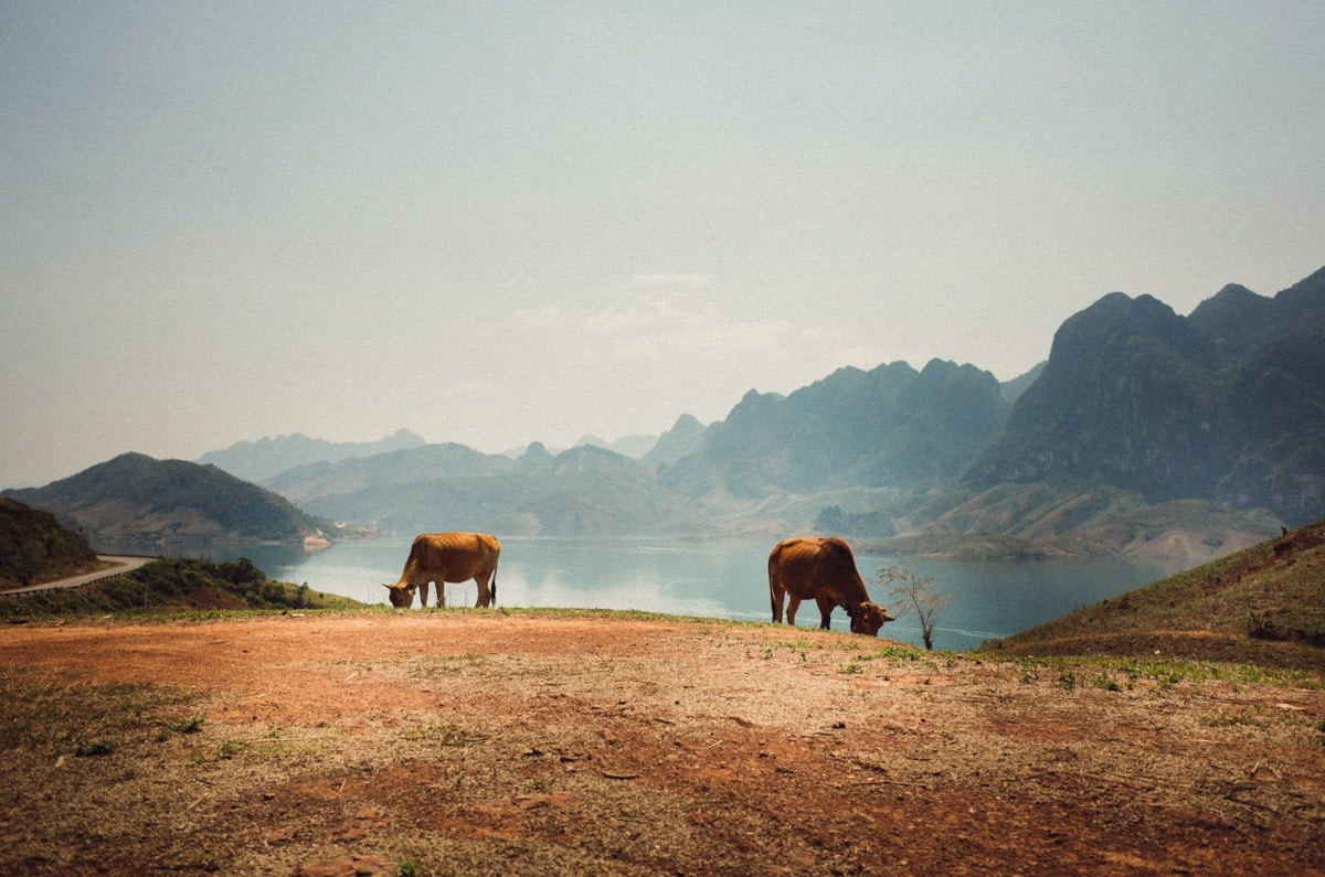 stilpirat_vietnam-23