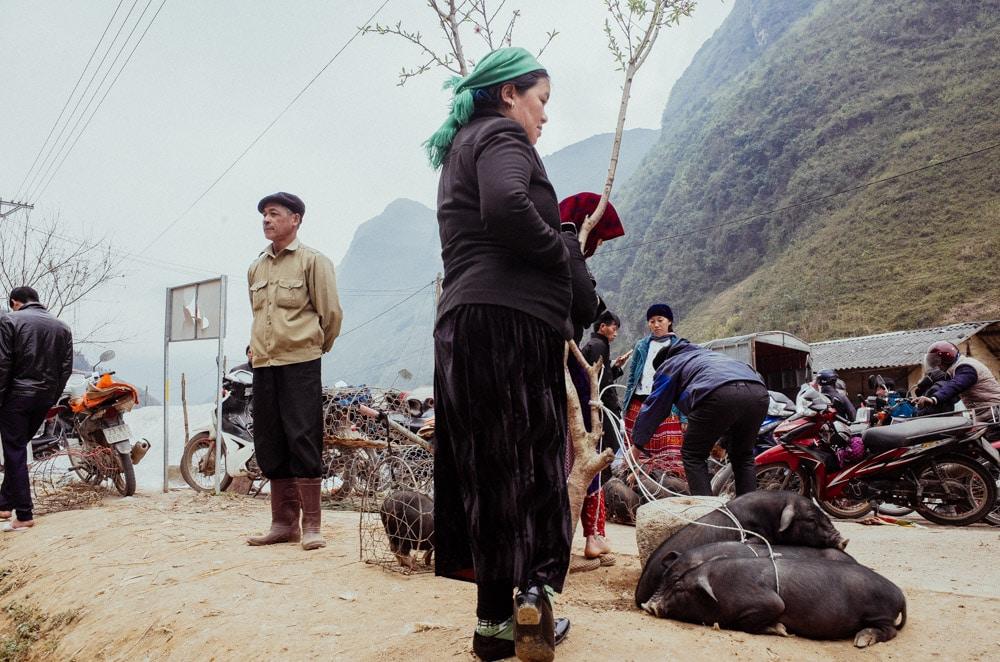 vietnam_stilpirat-70